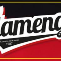 Flamengo Football Club